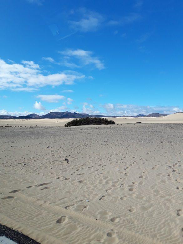 Eiland tour Fuerteventura