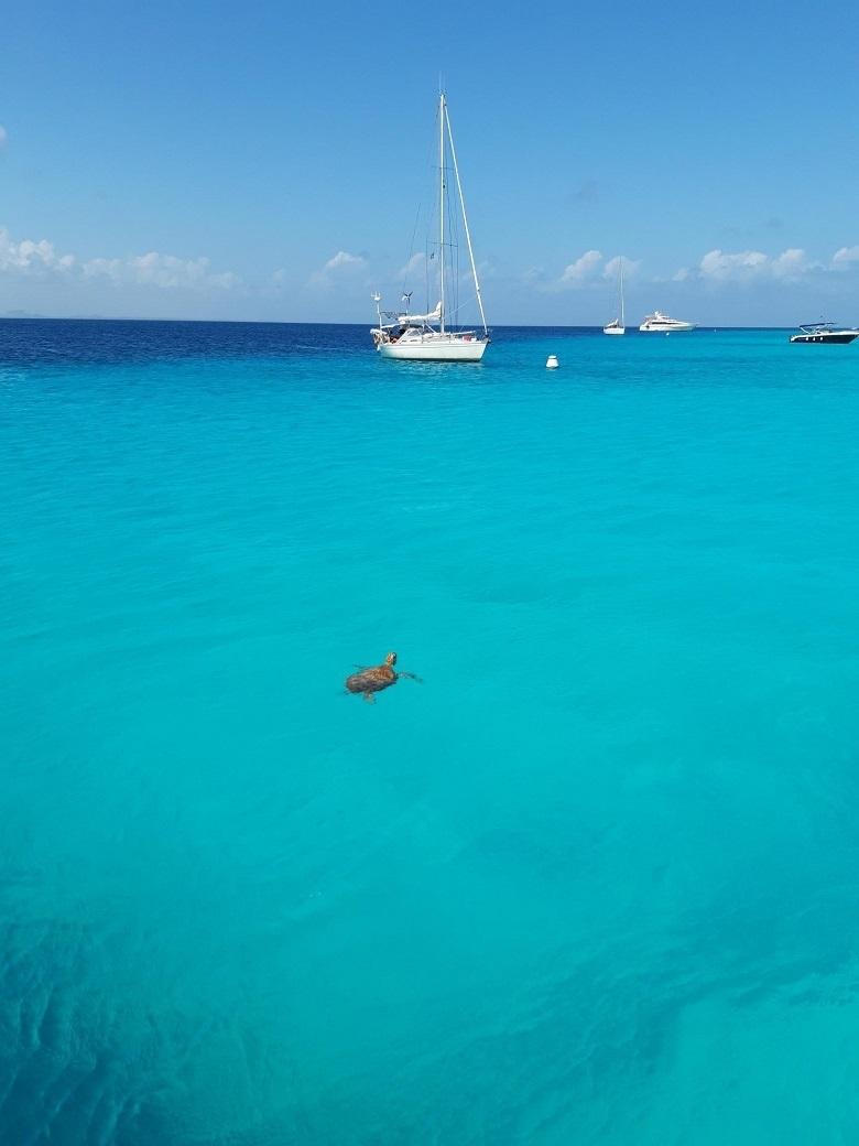 eiland Klein Curacao