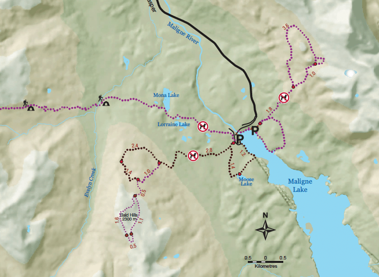 Hikes maligne lake kaart