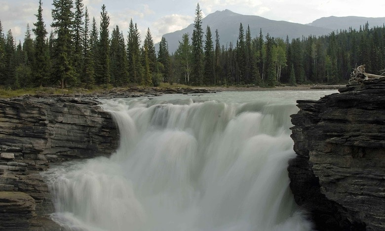 natuur icefields parkway