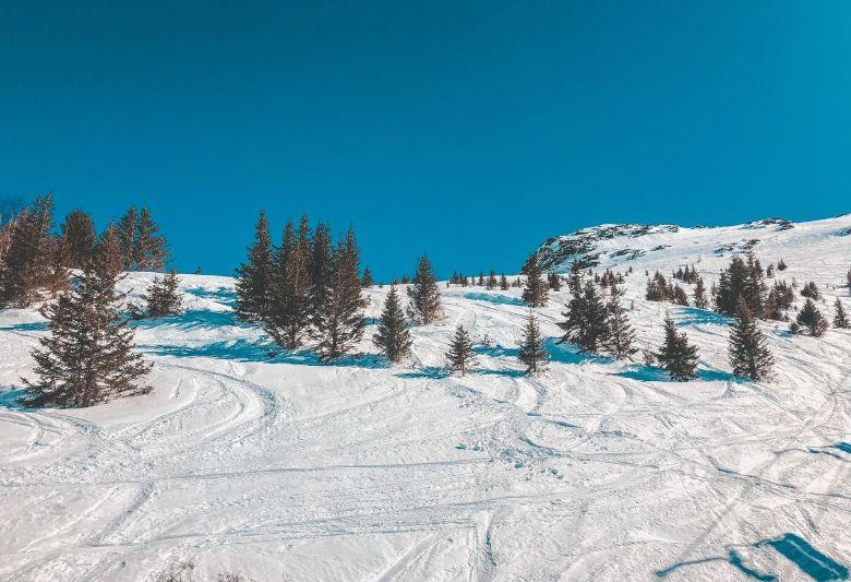 beste skigebieden frankrijk
