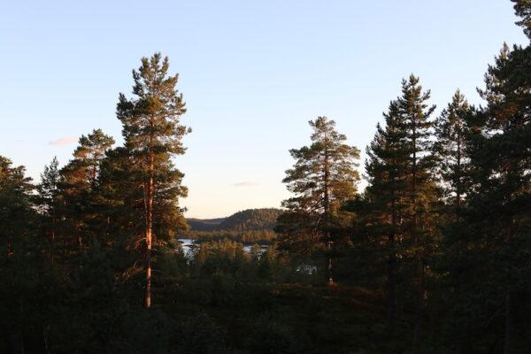 Noorwegen roadtrip hoogtepunten