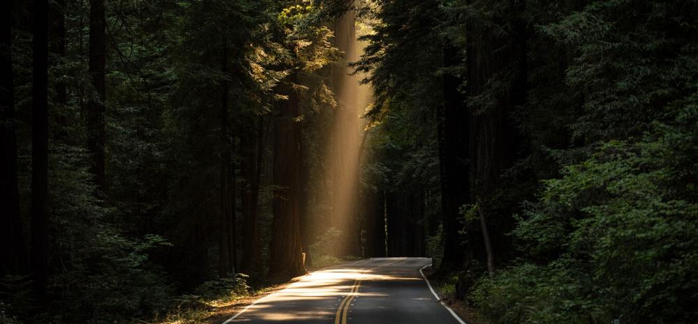 Roadtrip maken
