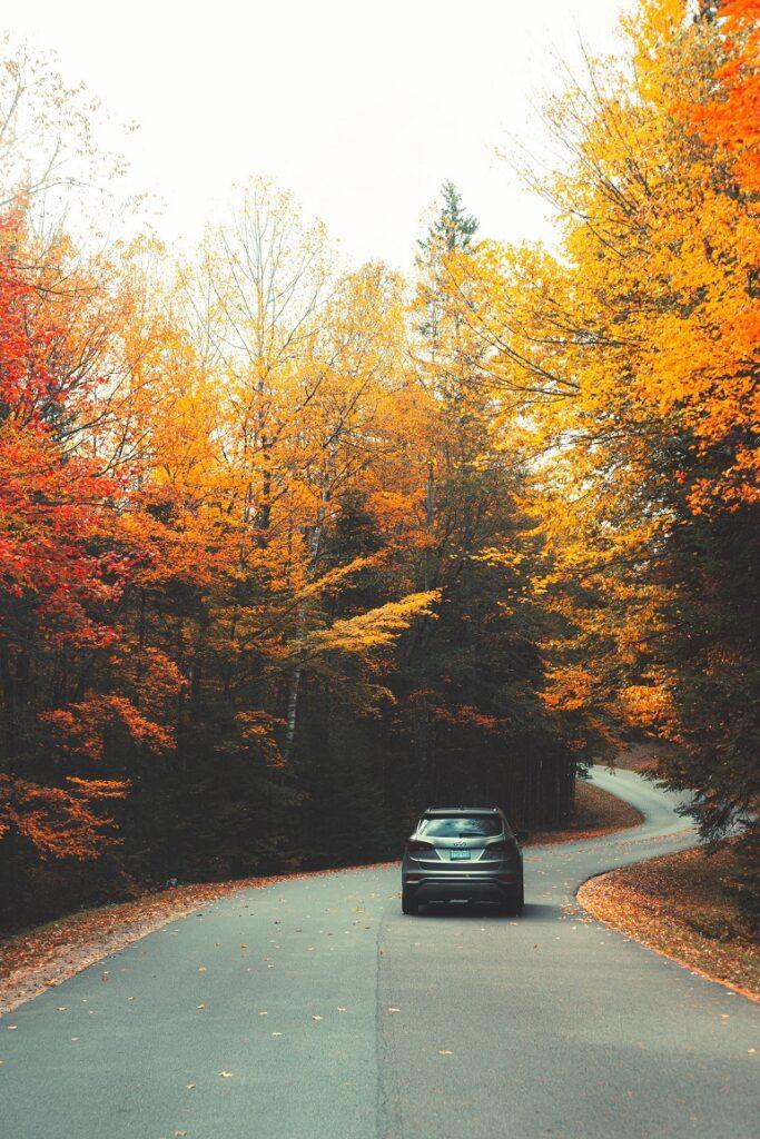 Rondreis met auto
