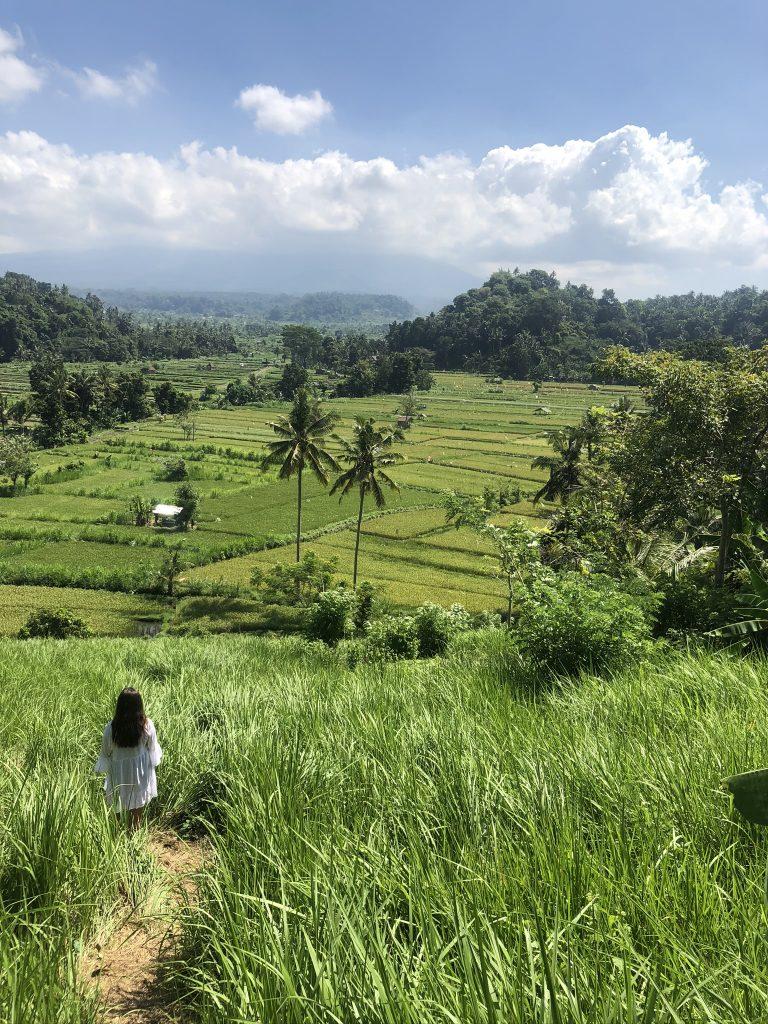 sidemen bali rijstvelden