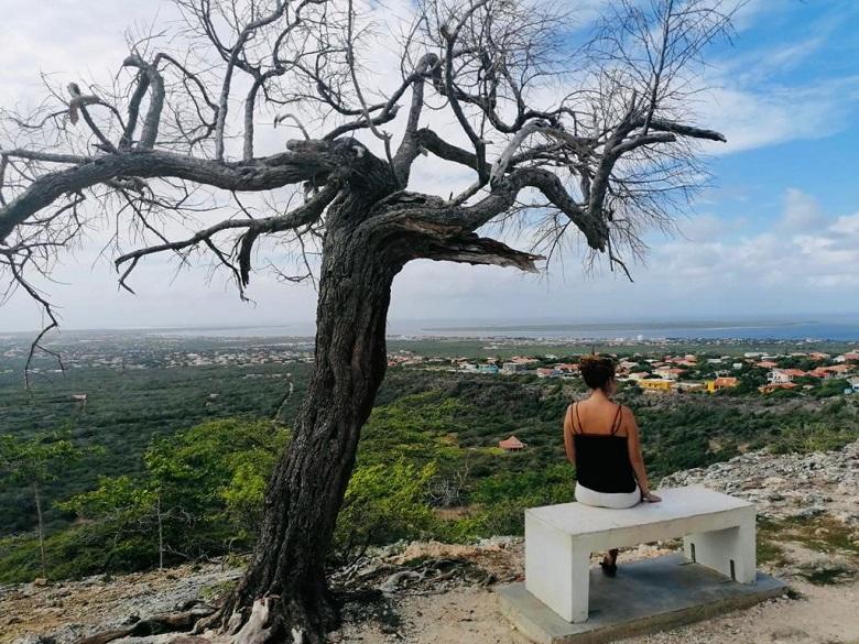 highlights Bonaire
